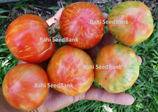 Red Flower Ball Tomato - A Stunning & Heavy Yielding Tomato Variety - 10 Seeds!