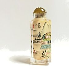 Chinese Antique Glass Snuff Bottle Inside Painted Glass Rare Snuff Bottle Signed