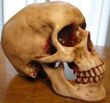Human Head Skull Art Model Skeleton Cranium Jaw Bone Science Education Replica