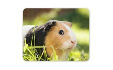 Cute Guinea Pig Mouse Mat Pad - Tri-Colour Pig Kids Funny Gift PC Computer #8268