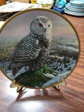 """Vtg.Noble Owl America """"Morning Mist"""" Spode Hamilton Owl Plate 1986 Euc"""
