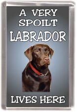 """Labrador (Chocolate) Dog Fridge Magnet  """"A VERY SPOILT LABRADOR LIVES HERE"""""""