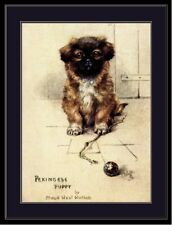 English Picture Print Pekingese Puppy Dog Puppies Dogs Poster Art