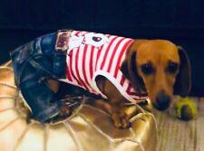 Dog jumpsuit 20cm - 25 x small- small dogs, denim, 4 legs NEW