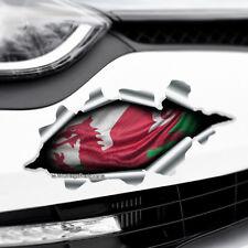 TORN RIPPED 3D EFFECT WALES FLAG CYMRU Novelty Car,Bumper Vinyl Decal Sticker