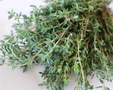 Wohlriechenste Pflanzen der Welt * Echte Naturdüfte Duftpflanzen-Samen-Set
