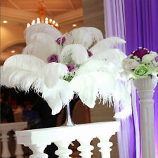 10/20/50pcs Large Ostrich Feathers Costume Birthday Wedding Party 25-35cm Decors