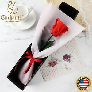 Real Preserved Forever Rose Unique Eternity Bouquet in Gift Box Wedding Gift