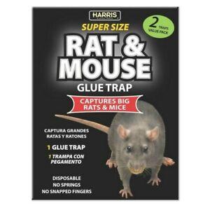 HARRIS Super Size Toughest Rat/Mouse Disposable Glue Trap 2 Pack