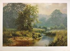 "David dipnall ""doucement glisse stream"" River new print! taille:50 cm x 75 cm rare"