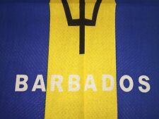 """Barbados flag bandana, head wrap, arm band 22"""" X 22"""" 100% cotton"""