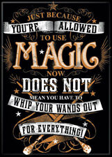 """Harry Potter Photo Quality Magnet """"...Whip Your Wands Out For Everything"""""""
