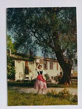 Vintage Provence France colour Postcard c1960s Sous les oliviers