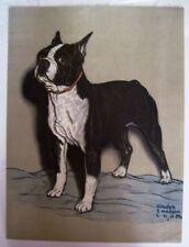 """Precioso 591ms Estampado de una """"Boston Terrier"""" por """"Gladys Emerson Cook """""""
