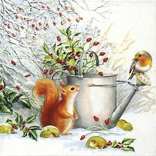 TOVAGLIOLI di carta 4x-Rosso Scoiattolo e Robin-per feste, Decoupage CRAFT
