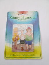 CLASSIC SAUCY HUMOUR COLLECTION FRIDGE MAGNET- ICE CREAM DRIPPING - NEW