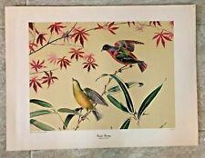 "Anthony La Paglia 1947 Art Print  ""Painted Bunting"" NY Graphic Society"