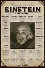 THE WISDOM OF ALBERT EINSTEIN POSTER 24x36 NEW FREE SHIPPING