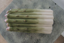 Retired FITZ and FLOYD Classics  Asparagus 2-piece Covered Dish