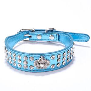 Stunning 💙 Blue XSmall Metallic Bling Dog Collar
