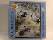 Bits & Pieces Studio Jigsaw Puzzle With Ducks & Swans 1,000 Pieces     NEW gm544