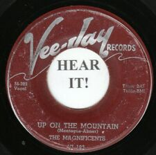 The Magnificents DOO WOP 45 (VeeJay 183) Up On The Mountain /Why Did She Go