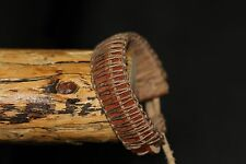 Men's Double Leather Bracelet Brown Cord Hemp Knotted Surfer  Handmade Sizeable