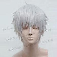 Tokyo Ghoul Ken Kaneki Wig Short Silver Gray Cosplay Costume Wig + Free Wig Cap