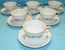 6 tasses + 6 sous tasses porcelaine «WINTERLING» décors floraux myosotis.