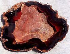 Crater agate collector specimen