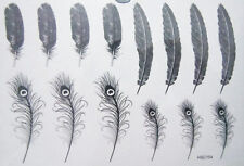 Collection of 14 Detailed Arty Feathers/ Phoenix Peacock Temporary Tattoo 154