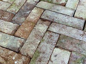 Antike Pflasterriegel Pflasterklinker rot bunt ca. 25x7,5x6,5cm aus Rückbau