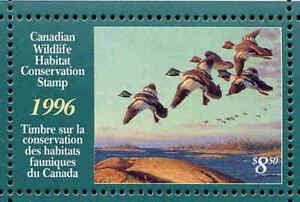 Canada 1996 Canard Tampon Mint En Dossier Comme Publié Goldeneyes Par Dwayne