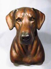 Rare Pamela Shawley Weaver Bronze Chocolate Labrador Retriever Dog Sculpture