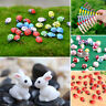 Vivid Miniature Fairy Garden Ornament Decor Pot DIY Craft Accessories Dollhouse
