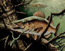 """GEORGE LUTHER SCHELLING - WALLEYE - Sport Fishing Print 11x14"""""""
