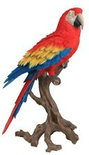 More details for life size & large red macaw figure. very realistic & stunning, vivid arts