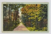 Postcard Linen Greetings From Pleasanton California Road Woods