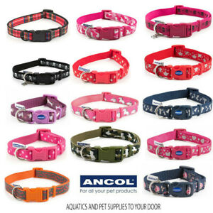 Ancol Dog Collars- Choose from a selection of Fashion Collars or matching Leads!
