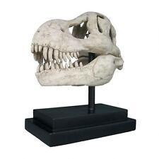 T-Rex Dinosaur Skull Replica Fossil Statue Predator on Museum Mount