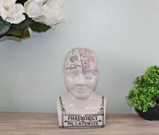Crackle Phrenology Head Ceramic Sculpture Bust Ornament Decor Large 29cm Tall