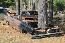 1961 Pontiac Convertible junk yard large oak grown thru engine 8 x 10 Photograph