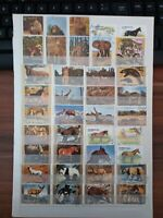 Tiere Animals Lot Briefmarken Stamps Sellos Timbres