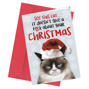 #363 CHRISTMAS CARD Rude Greeting Card funny humour joke / See this Cat