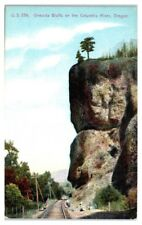 Oneonta Bluffs on Columbia River, OR Postcard