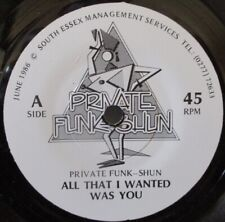 """PRIVATE FUNK-SHUN - All That I Wanted Was You / Fantasy ~ 7"""" Single"""