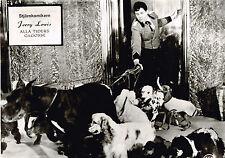 The Bellboy German lobby card #24 - Jerry Lewis