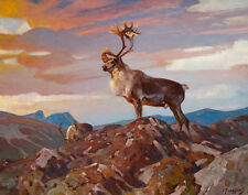 Rungius Carl Caribou Canvas 16 x 20  #5633