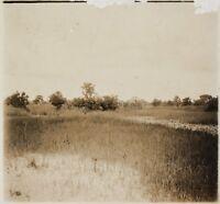 Africa Nera Foto NB14 Placca Da Lente Stereo Vintage Ca 1910