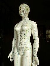 Akupunktur Lernmodell Frau 48cm auf Holzplatte, Meridianpuppe, Akupunkturpuppe
